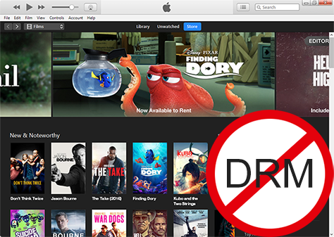 Top 4 Best DRM Video Removal Software & Converter