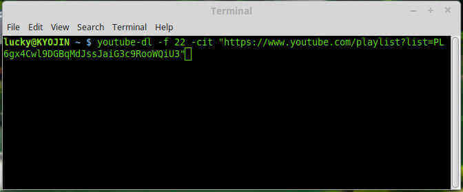 YouTube DL: Best YouTube Playlist Downloader For Linux
