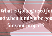 What is Golang used for and when it might be good for your project?